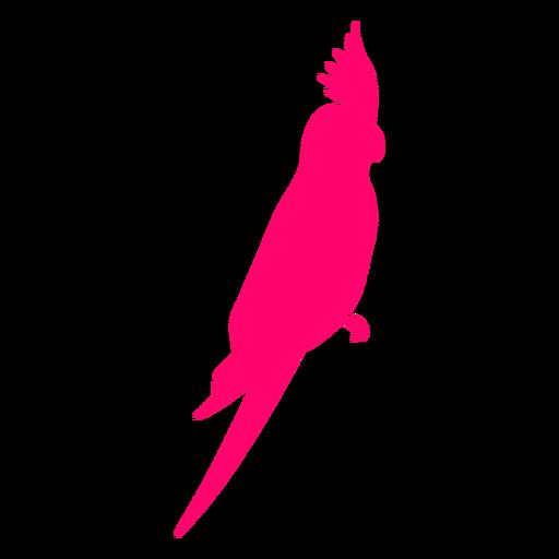 Sitting cockatoo bird silhouette Transparent PNG