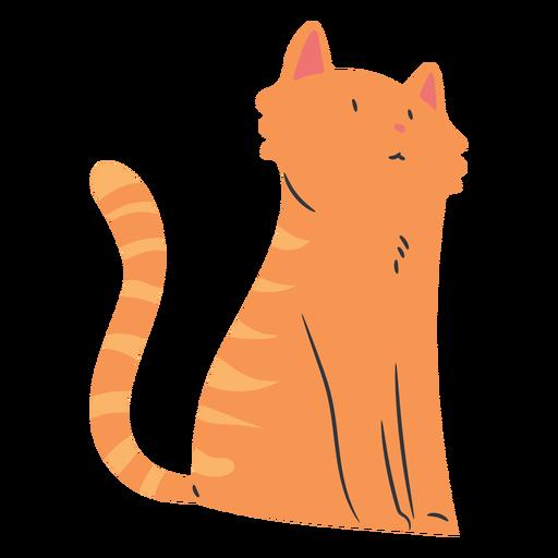 Sentado gato de pelo corto plano