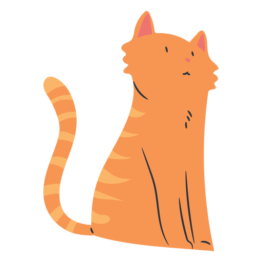 Sitting short haired cat flat