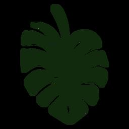 Dibujado a mano planta de hoja partida