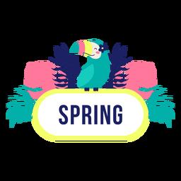 Diseño de selva de marco de título de primavera