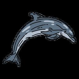 Accidente cerebrovascular delfín mamífero acuático