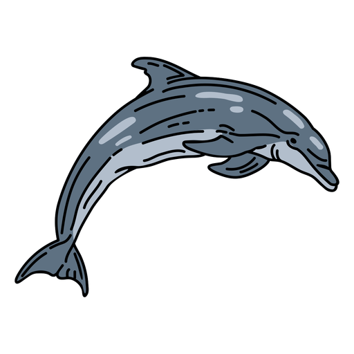 Stroke dolphin aquatic mammal