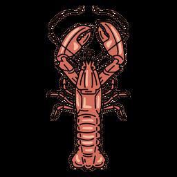 Stroke lobster animal