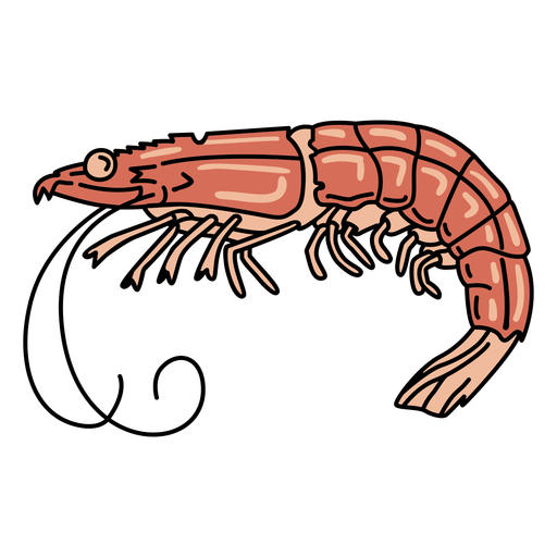 Animal de gambas de trazo Transparent PNG