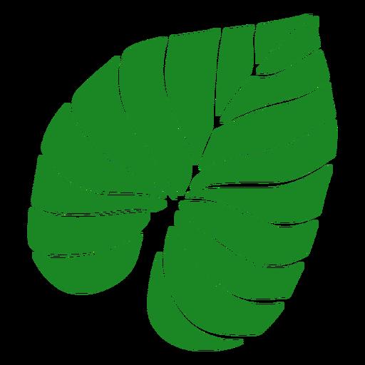 Dibujado a mano palma de hoja tropical
