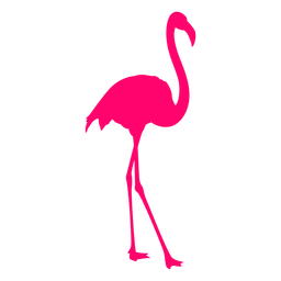 Silhueta tropical flamingo