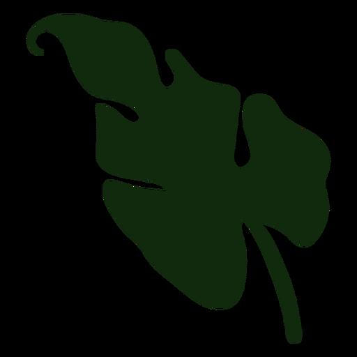 Tropical plant leaf hand drawn