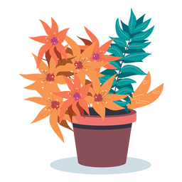 Bloomed plant pot flat