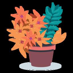 Vaso de planta floresceu plana