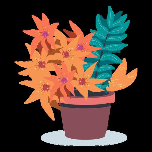 Bloomed plant pot flat Transparent PNG