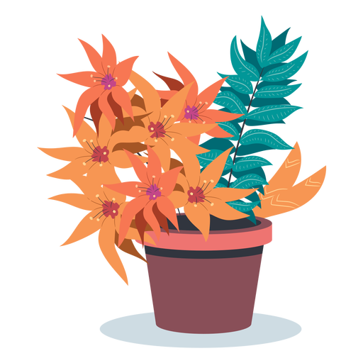 Bloomed plant pot flat