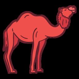 Camel animal flat