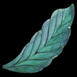 Aquarela de folhas longas
