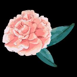 Flor rosa com folhas em aquarela