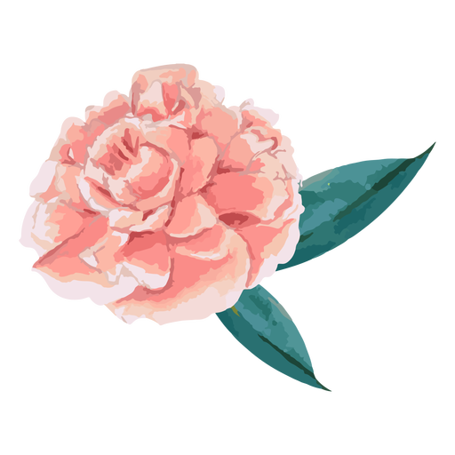 Pink flower with leaves watercolor Transparent PNG