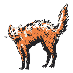 Bristly cat illustration
