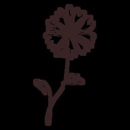 Margarita flor planta trazo de dibujo lineal