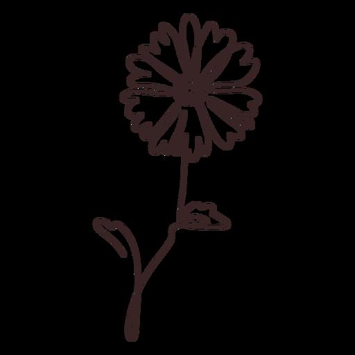 Trazo de dibujo de línea de planta de flor de margarita