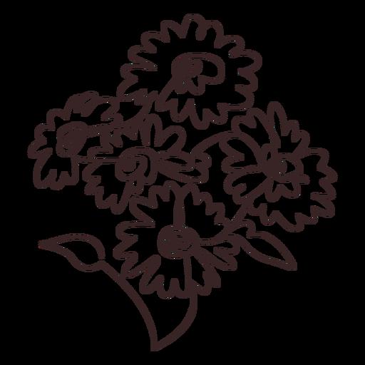 Dibujo lineal de ramo de flores de margarita