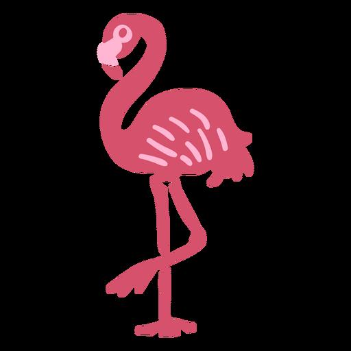 Flamingo tropical animal doodle