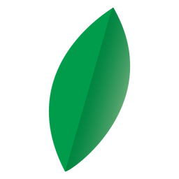 Oval leaf nature icon
