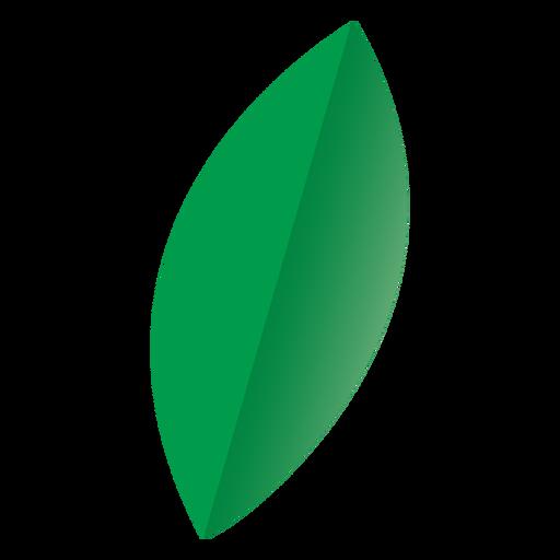 Oval leaf nature icon