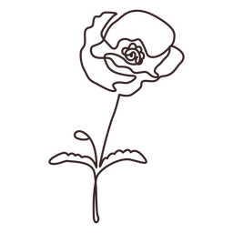 Poppy flower plant line drawing
