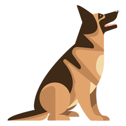 Sitting german sheperd dog