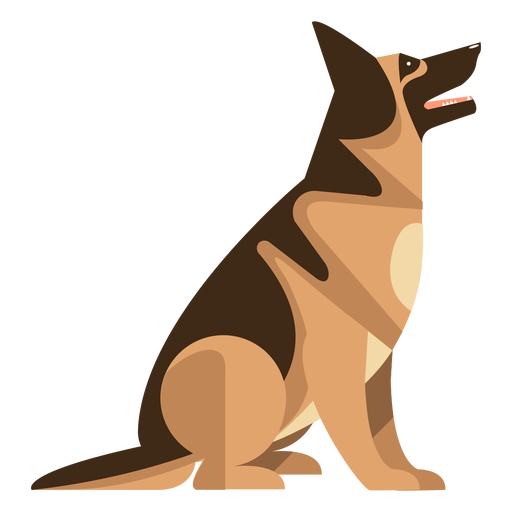 Sitting german sheperd dog