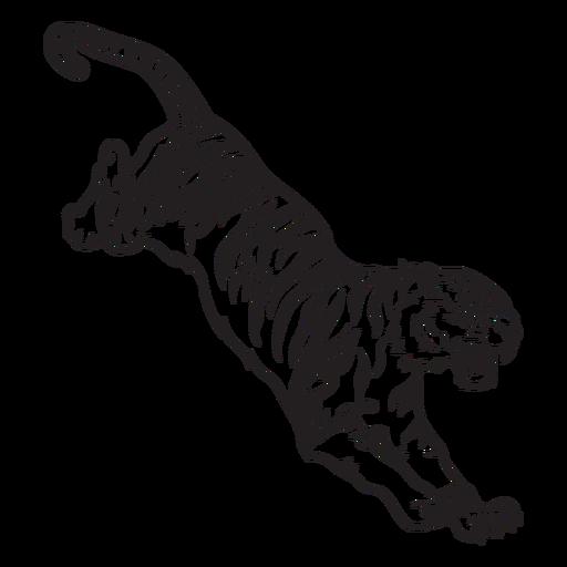 Tiger attacking prey stroke