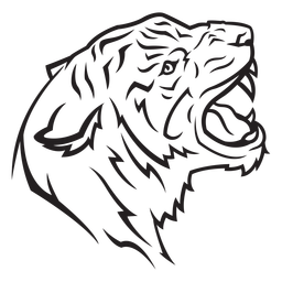 Curso de vista lateral de cabeça de tigre