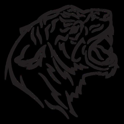 Golpe de visão lateral da cabeça do tigre