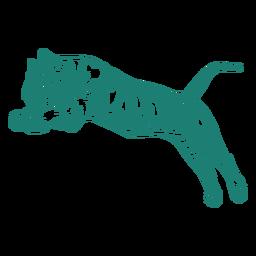 Projeto de salto de tigre