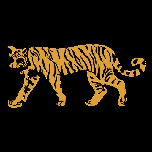 Tigre caminando linda mirada