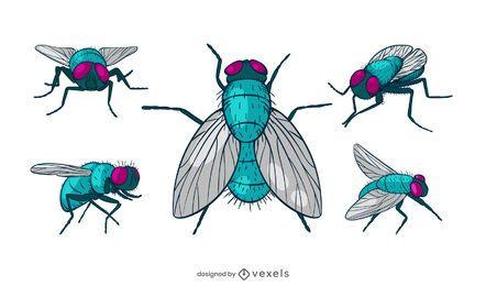 Pacote de design de mosca comum colorido