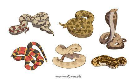 Conjunto de ilustração de serpente de cobra