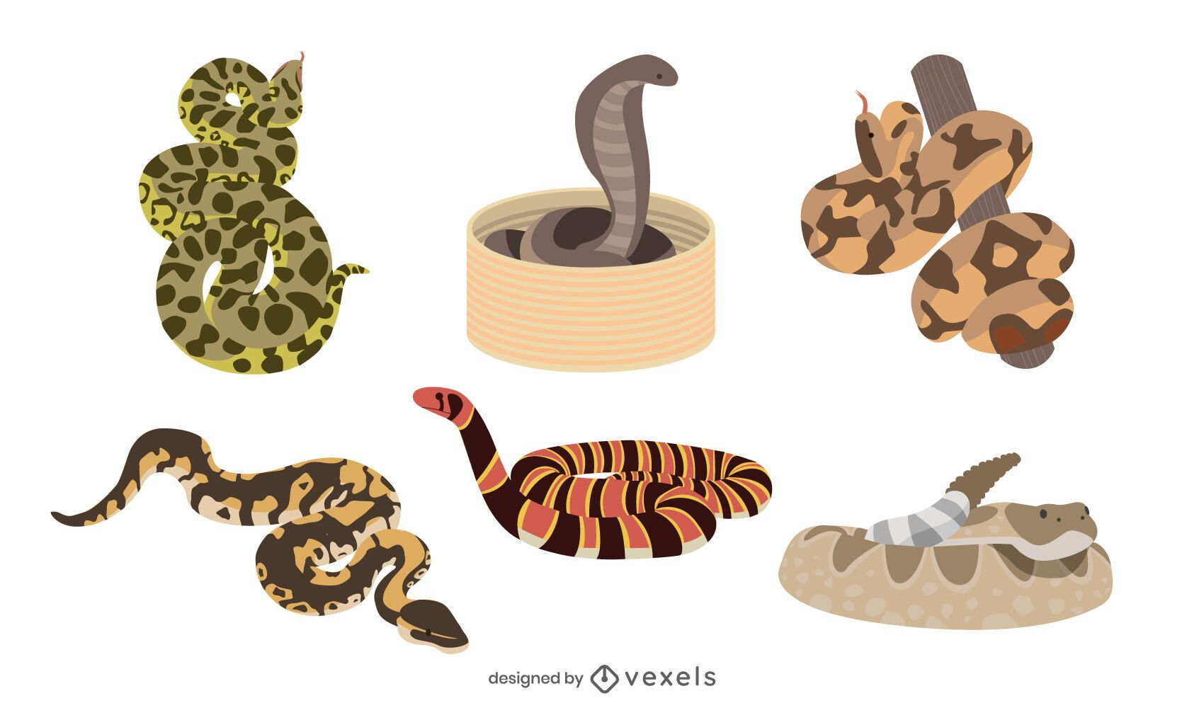 Snake flat illustration set