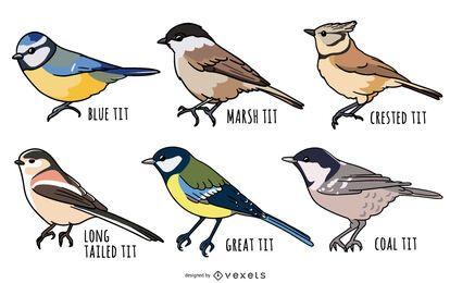 Tit birds illustration set
