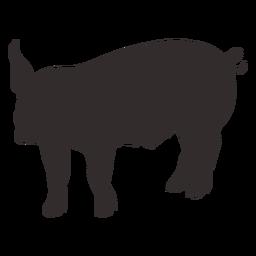 Silueta de pie de cerdo de granja