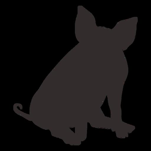 Vista frontal sentado silueta de cerdo Transparent PNG