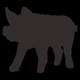 Vista frontal de pie silueta de cerdo