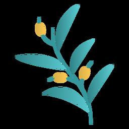 Diseño de la planta de olivo de Janucá