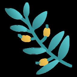 Diseño plano de la planta de olivo de Hanukkah