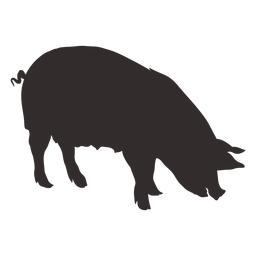 Large pig silhouette side view