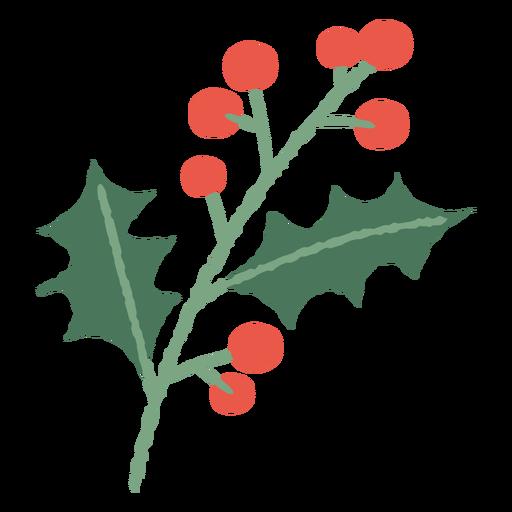 Mistletoe branch christmas illustration Transparent PNG