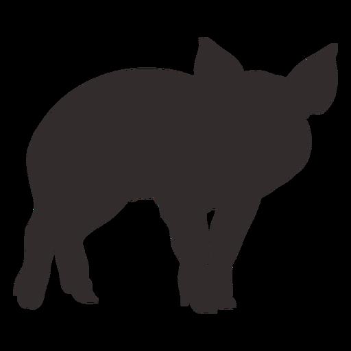Pig silhouette design