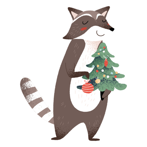 Racoon animal christmas elements illustration Transparent PNG