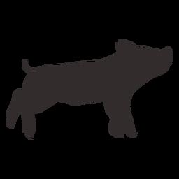 Silhueta de porco pequeno em pé