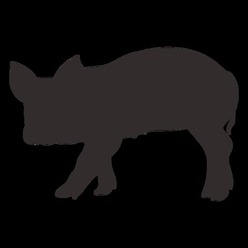 Vista lateral de silueta de cerdo caminando